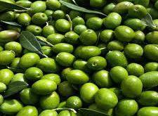 خرید زیتون سبز